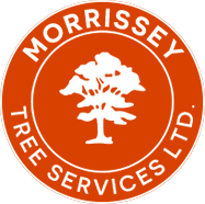 Morrissey Tree Services Logo